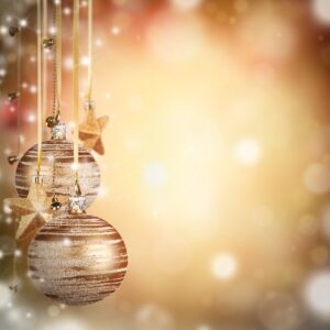 Half Day Course – Saturday 4th December 2021 – How to Survive the Festive Season